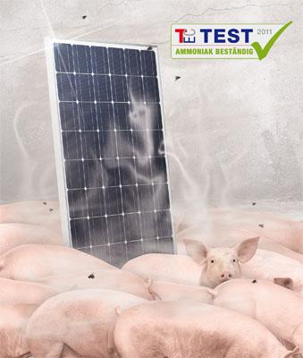 Ammoniak-Test mit Bravour bestanden
